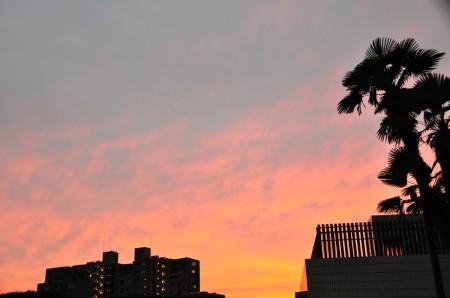 紫空の夕暮れ