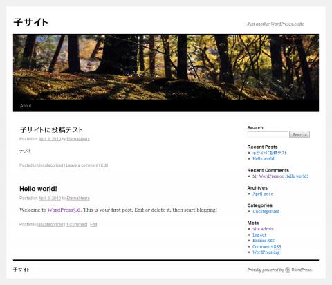 WordPress3.0の子サイトを作る方法⑥