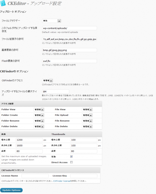 CKEditor For WordPressの設定画面4